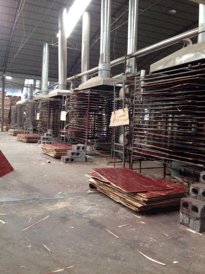 荣强模板-建筑模板生产设备