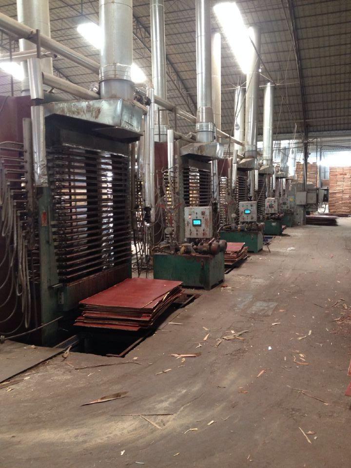 广西荣强模板-建筑模板生产设备